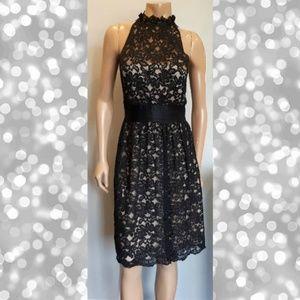 Banana Republic Lace Fit & Flare Dress Sleeveless